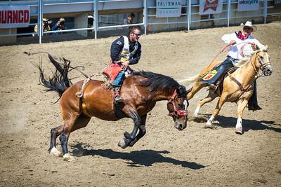 Calgary_Stampede_2014-3609