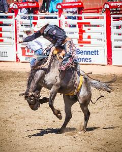 Calgary_Stampede_2014-3919