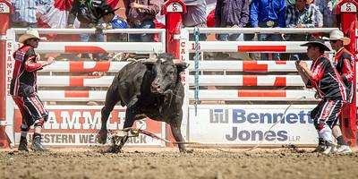 Calgary_Stampede_2014-7437