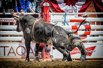 Calgary_Stampede_2014--25