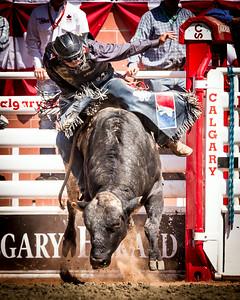 Calgary_Stampede_2014-7395