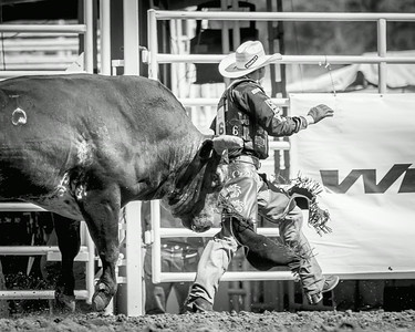 Calgary_Stampede_2014--27