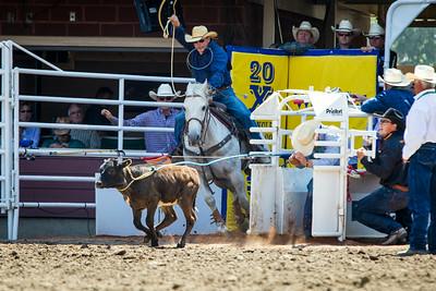 Calgary_Stampede_2014-4951