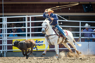 Calgary_Stampede_2014-4953