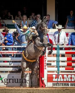 Calgary_Stampede_2014-7876