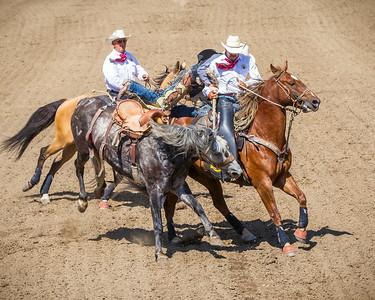 Calgary_Stampede_2014-3823