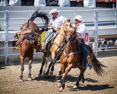 Calgary_Stampede_2014-3848
