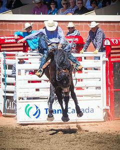 Calgary_Stampede_2014-3864
