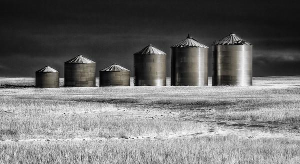 Prairie Sentinels (Gallery: 2015, 2016)