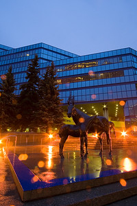 Horse statues in front of the Calgary Municipal Building