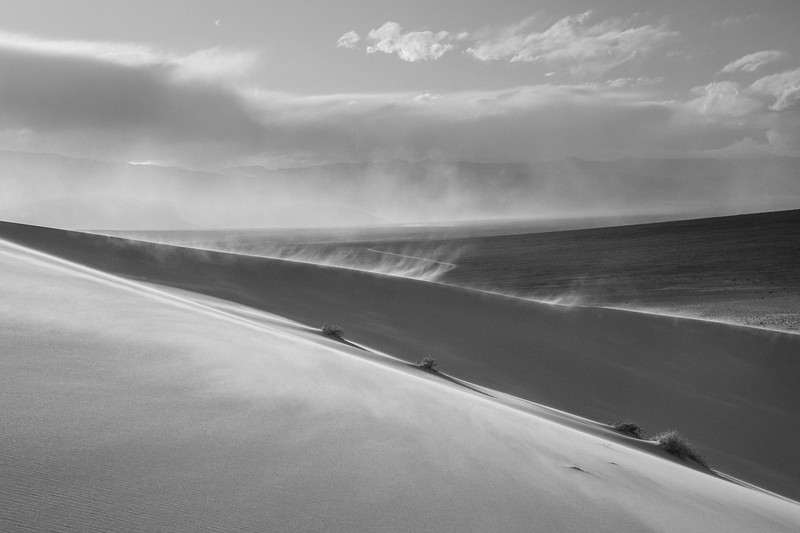 Blowing Sand in Black and White