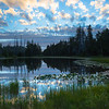 Grouse Lake Reflections