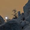Moonrise, Real Hidden Valley, Joshua Tree NP