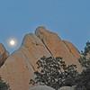 Moonrise, Locomotion Rock, Joshua Tree NP