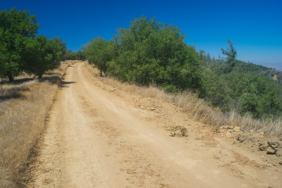 Long Dirt Wilderness Road