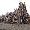 Driftwood IV