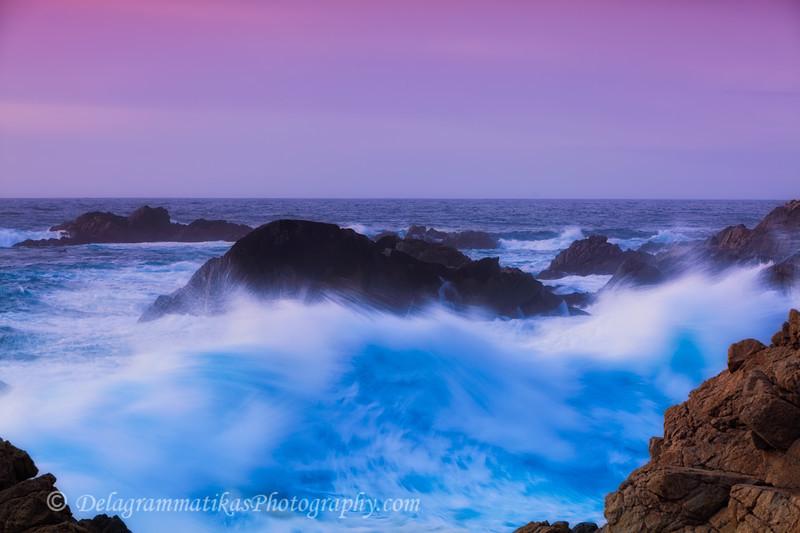 20101227_CA Central Coast_1094