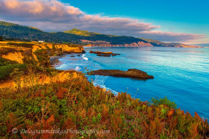 20110731_CA Central Coast_1483
