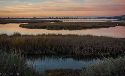 Arrowhead Marsh and Oakland