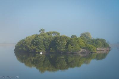 Island and Swan, Las Gallinas