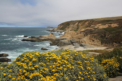 Drive to Bodega Bay