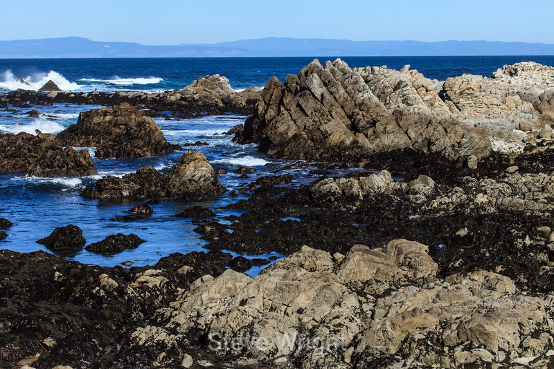Coastal View - 17 Mile Drive #0579