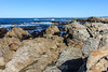 Coastal View - 17 Mile Drive #0596