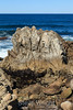 Coastal View - 17 Mile Drive #0748