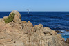 Coastal View - 17 Mile Drive #0542