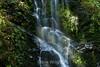Berry Creek Falls - Big Basin #0141