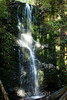 Berry Creek Falls - Big Basin #0131