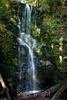 Berry Creek Falls - Big Basin #0142