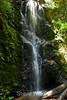 Berry Creek Falls - Big Basin #0079