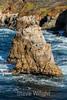 CA Coastline - Garrapata #6650