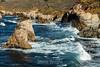 CA Coastline - Garrapata #6666