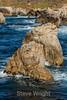 CA Coastline - Garrapata #6653