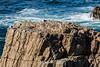 CA Coastline - Garrapata #6635