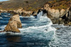 CA Coastline - Garrapata #6657