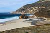 Seagulls - CA Coastline #4510