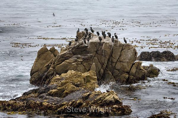 CA Coastline 7-14-2008 Under Construction