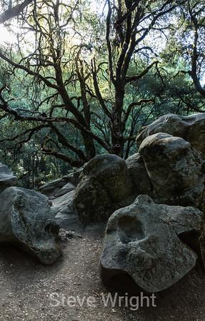 Castle Rock State Park, CA 2014