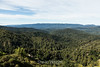 View from Castle Rock #9930