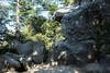 Castle Rock #9874