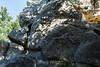 Castle Rock #9876