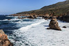 Coast - Garrapata #6469