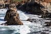Coast - Garrapata #6473