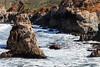 Coast - Garrapata #6471