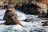 Coast - Garrapata #6472
