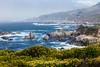 Wildflowers & Coast - Garrapata #9509