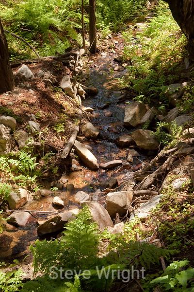 Sobranes Creek - Garrapata (32)